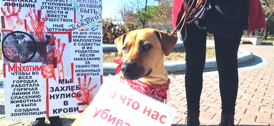 Фото: argumenti.ru